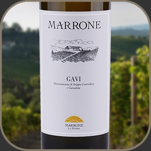 Agricola Marrone - Gavi DOCG