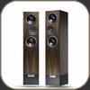 Living Voice IBX-R2