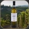 Agricola Marrone - Piemonte Bianco DOC Tartufo